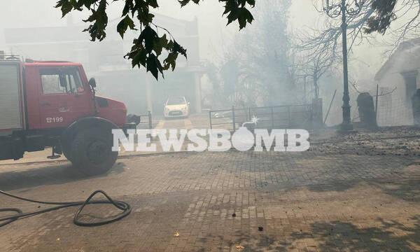 Φωτιά ΤΩΡΑ: Παραδόθηκε στις φλόγες το Κρυονέρι - Καίγονται σπίτια παντού στον οικισμό