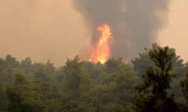 Φωτιά ΤΩΡΑ: «Πύρινος εφιάλτης» στην Ελλάδα - Εκτός ελέγχου οι φωτιές