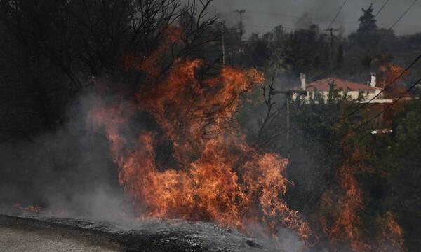 Κακουργηματική δίωξη σε βάρος 43χρονου για εμπρησμό στο Κρυονέρι