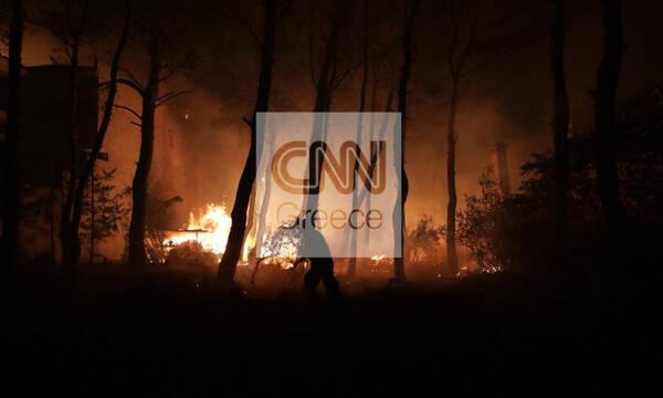 Φωτιές Εύβοια: Οι φλόγες έφθασαν σε Μονοκαρυά και Βασιλικά - Ολονύχτια μάχη για την Ιστιαία