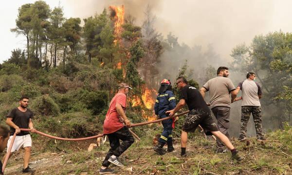 Φωτιά στην Εύβοια: Χωριά κυκλωμένα από τη φωτιά - «Η Ιστιαία περιμένει να ζήσει το ολοκαύτωμά της»