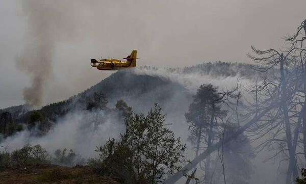 Φωτιά στην Ηλεία: Αναζωπυρώσεις σε τρεις περιοχές του Δήμου Αρχαίας Ολυμπίας