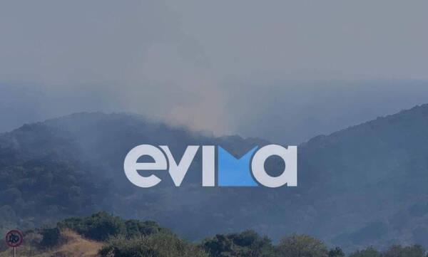 Φωτιά στις Πετριές Εύβοιας - Συναγερμός στην πυροσβεστική