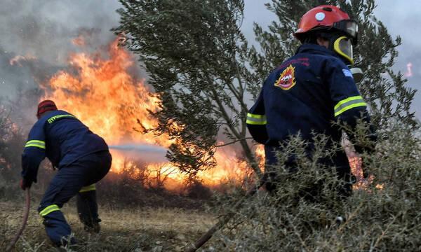Συνεχίζεται η μάχη με τις φλόγες σε Γορτυνία, Αρχαία Ολυμπία και Ακροκόρινθο