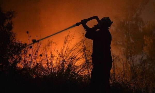 Φωτιά ΤΩΡΑ στη Νέα Μάκρη - Κοντά σε σπίτια οι φλόγες