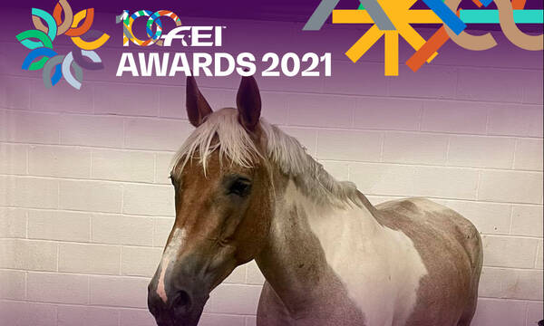 Η ΕΟΙ υποψήφια στα FEI Awards!