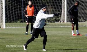 ΠΑΟΚ: Γκάζωσε τους παίκτες ο Λουτσέσκου: «Να είστε συγκεντρωμένοι»